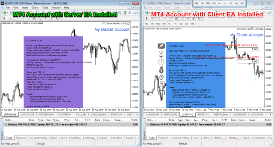 MT4 Master Account and MT4 Slave Account