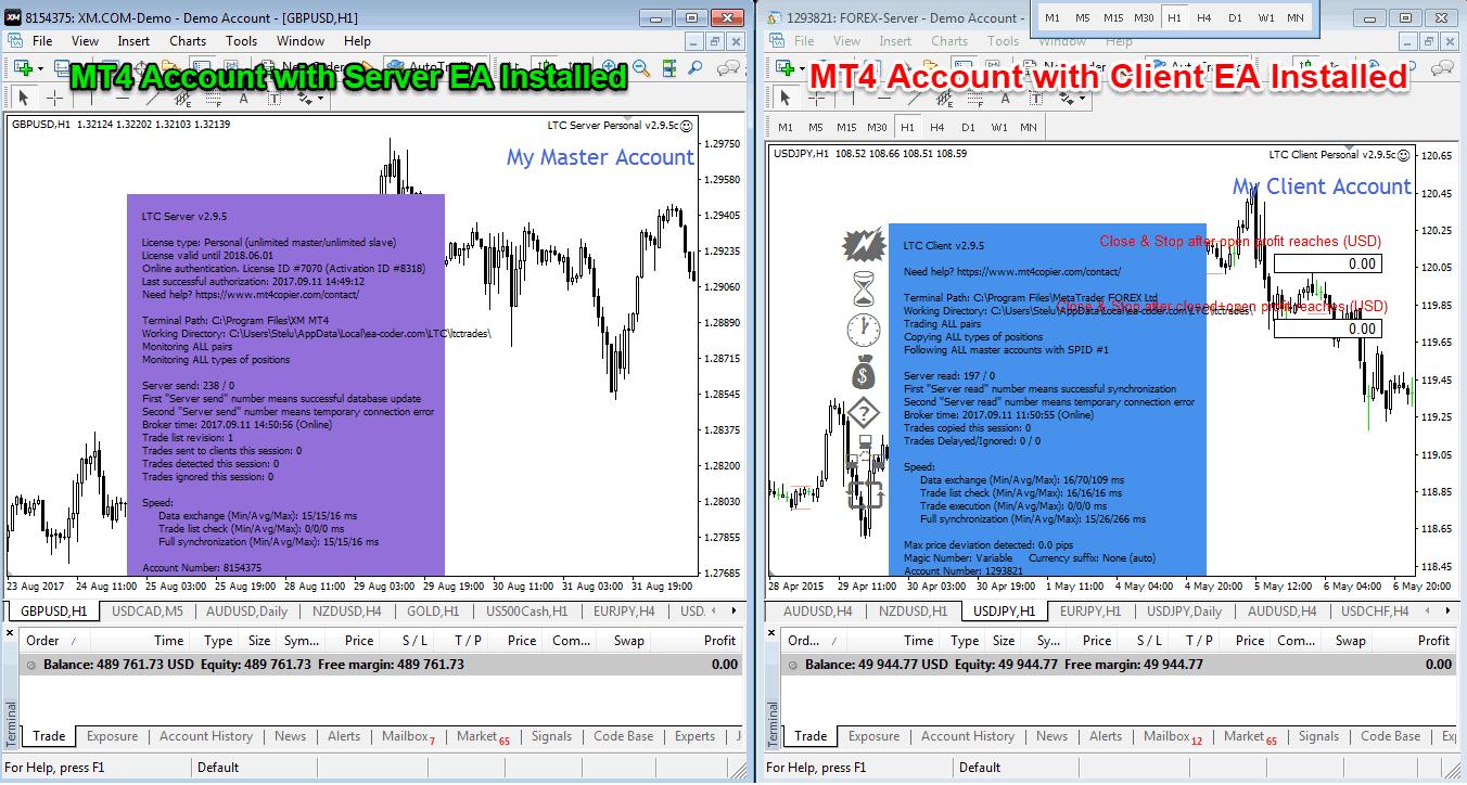Copy trade forex free